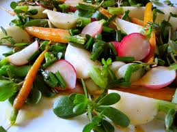 saladspring