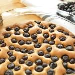 Paleo Coconut Blueberry Cake