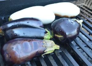 Eggplant DSC_0520