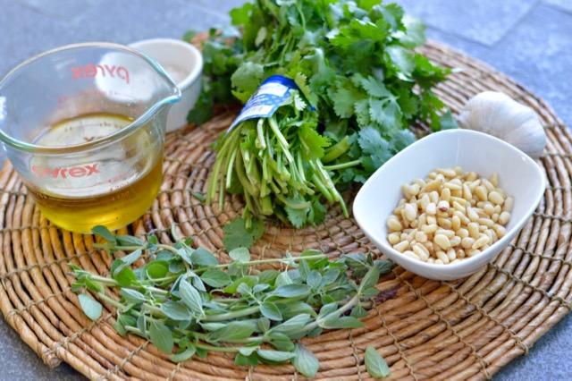CIlantro Pesto Ingredients