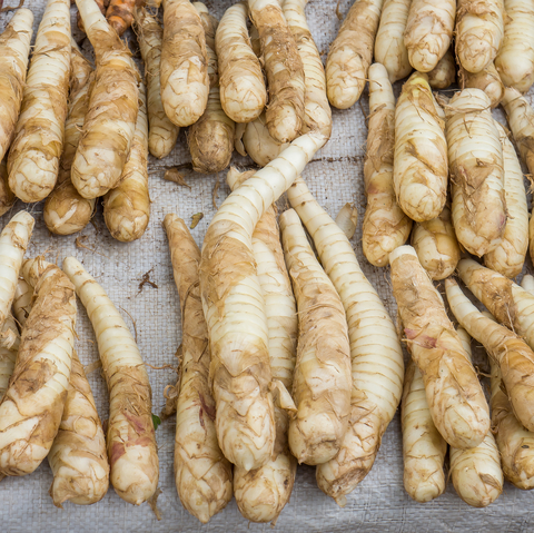 Arrowroot Soothes Digestion Balances pH