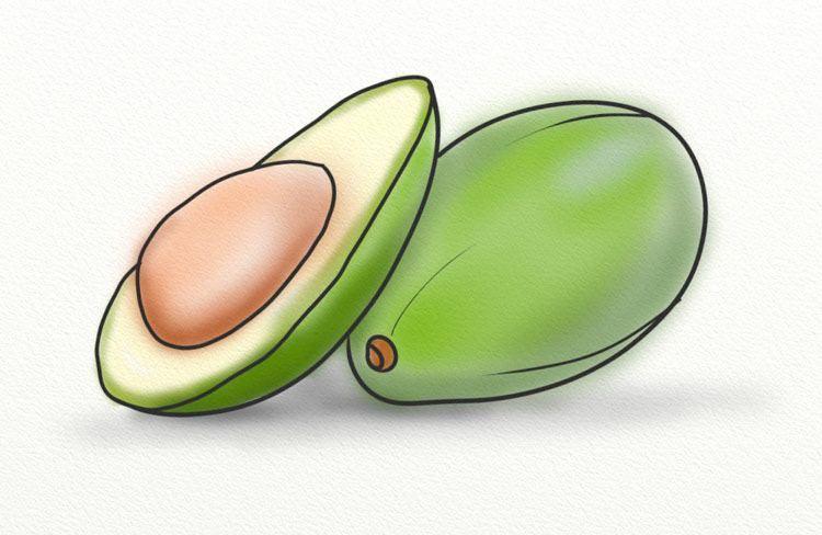 Avocado Oil for Hair Loss