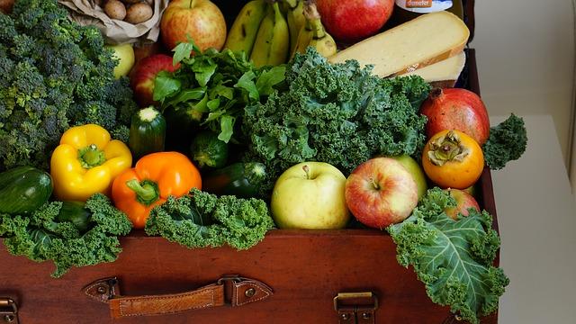 4 key elements of health