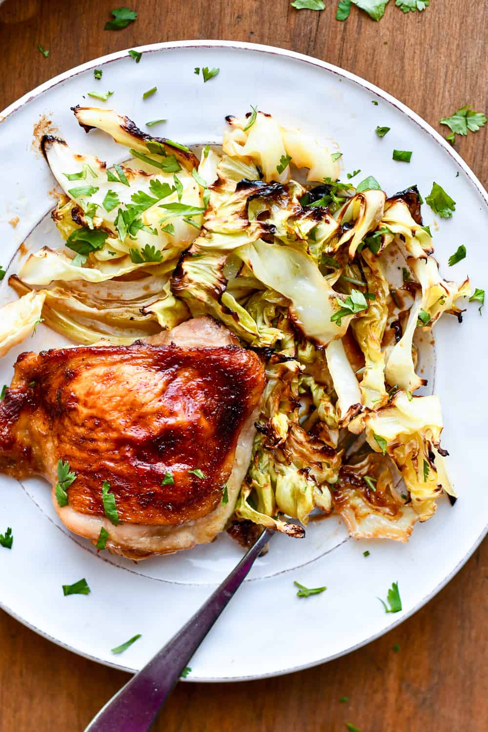 Asian Chicken with Crispy Cabbage plate