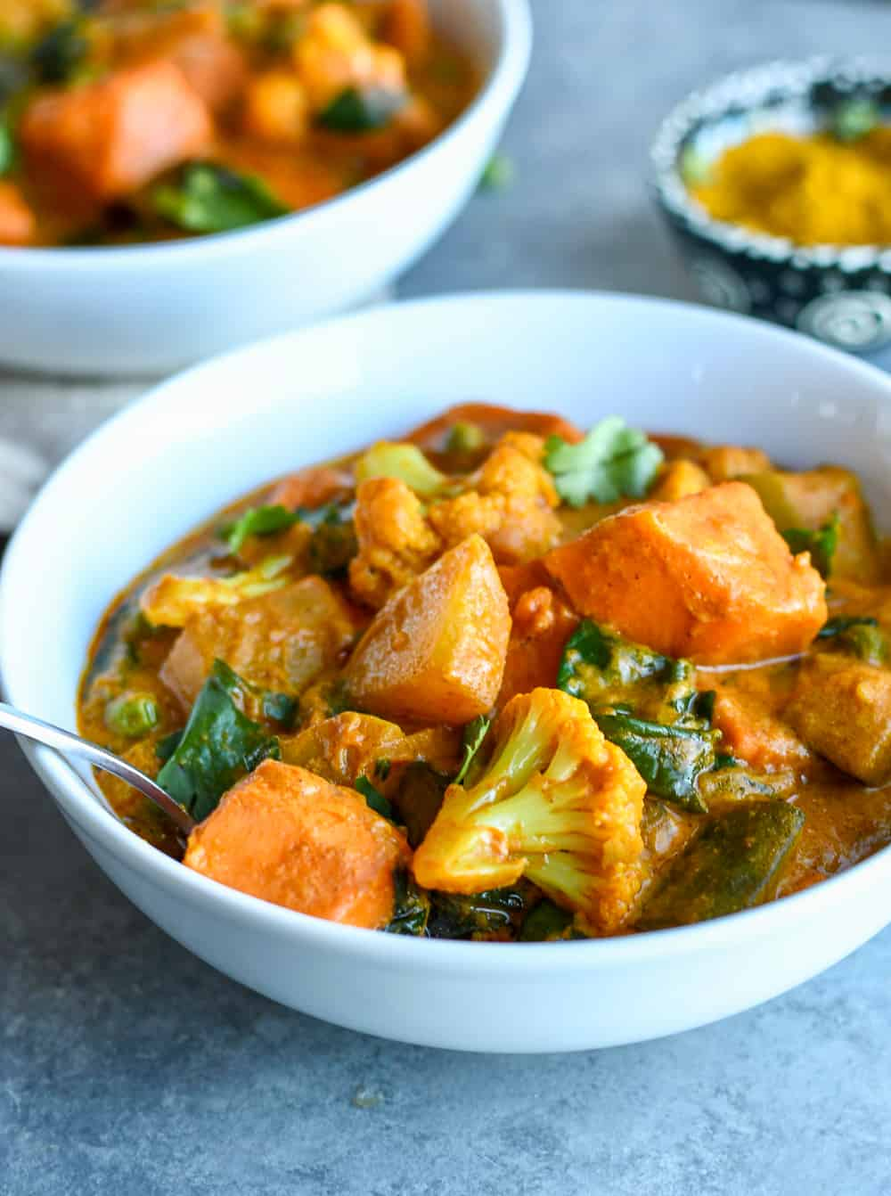Indian Vegetable Stew Close up